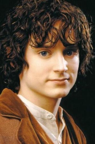 Elijah wood frodo katy perry buzz for Pics of frodo baggins